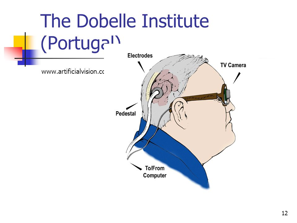 The Dobelle Institute (Portugal)