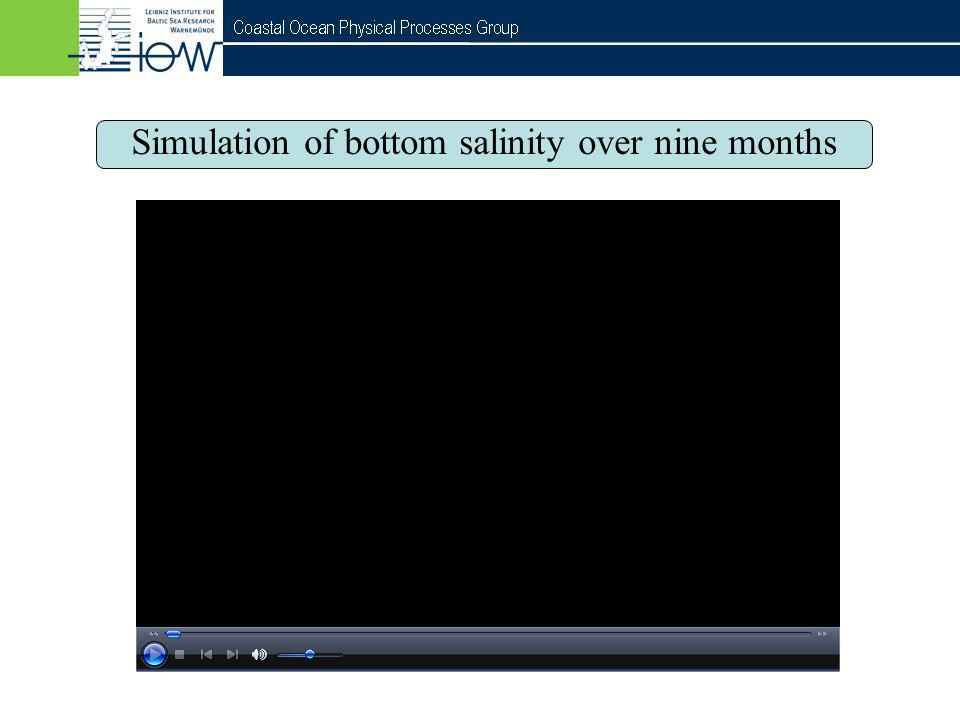 Simulation of bottom salinity over nine months