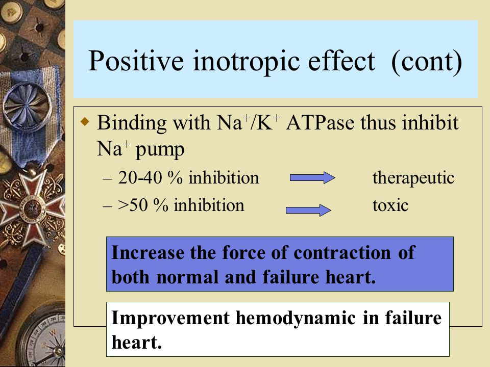 Positive inotropic effect (cont)