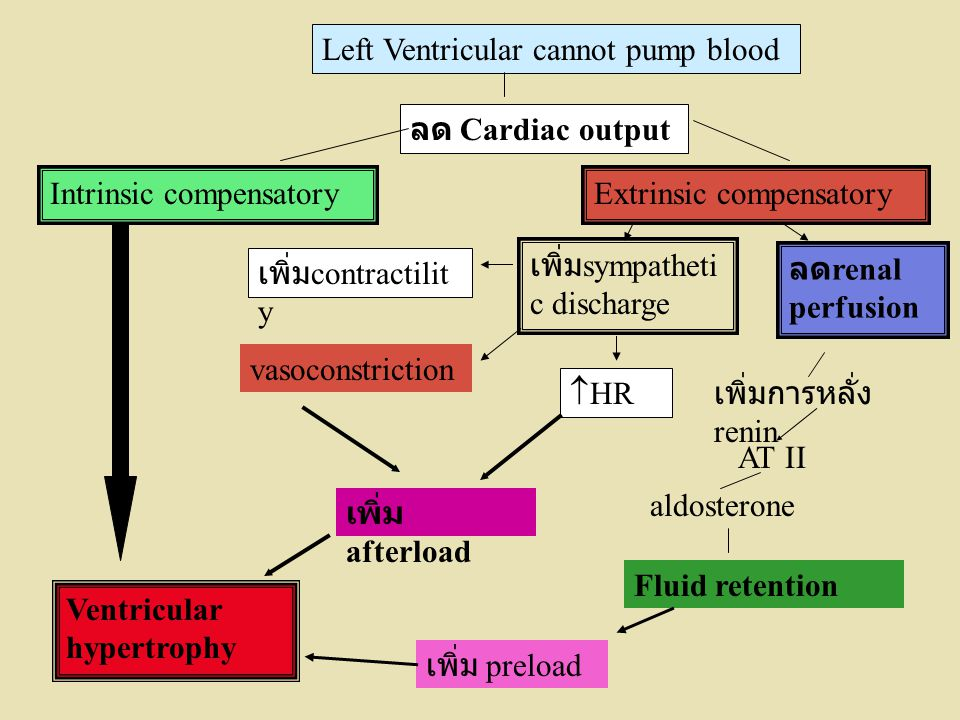 Left Ventricular cannot pump blood