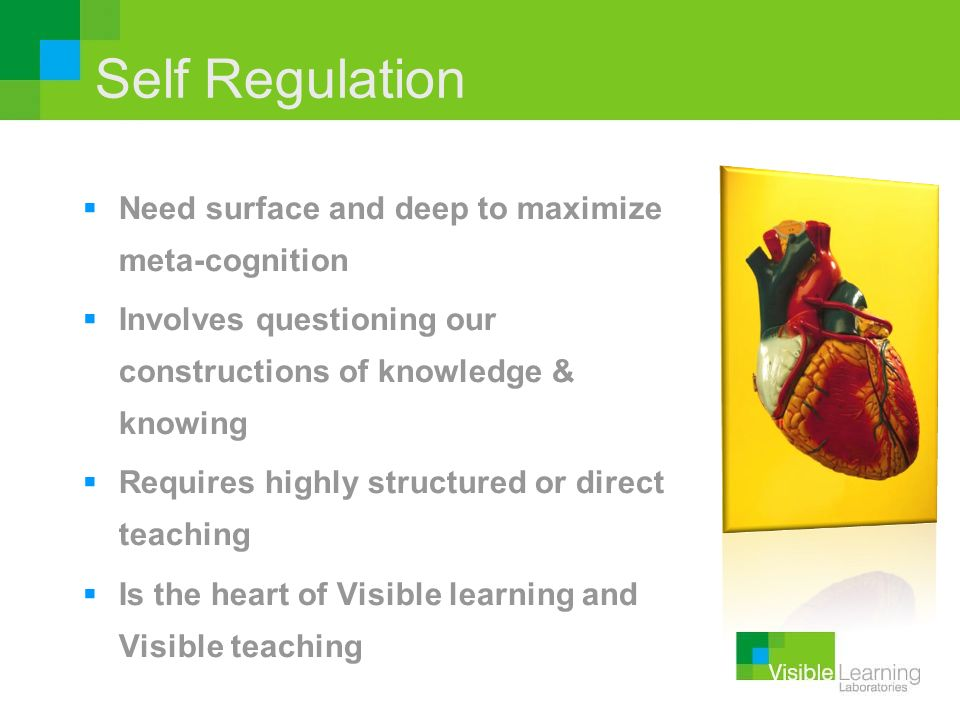 Self Regulation Need surface and deep to maximize meta-cognition