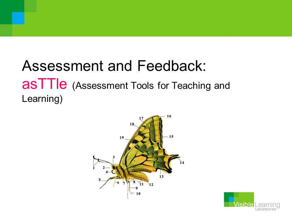Assessment and Feedback: asTTle (Assessment Tools for Teaching and Learning)
