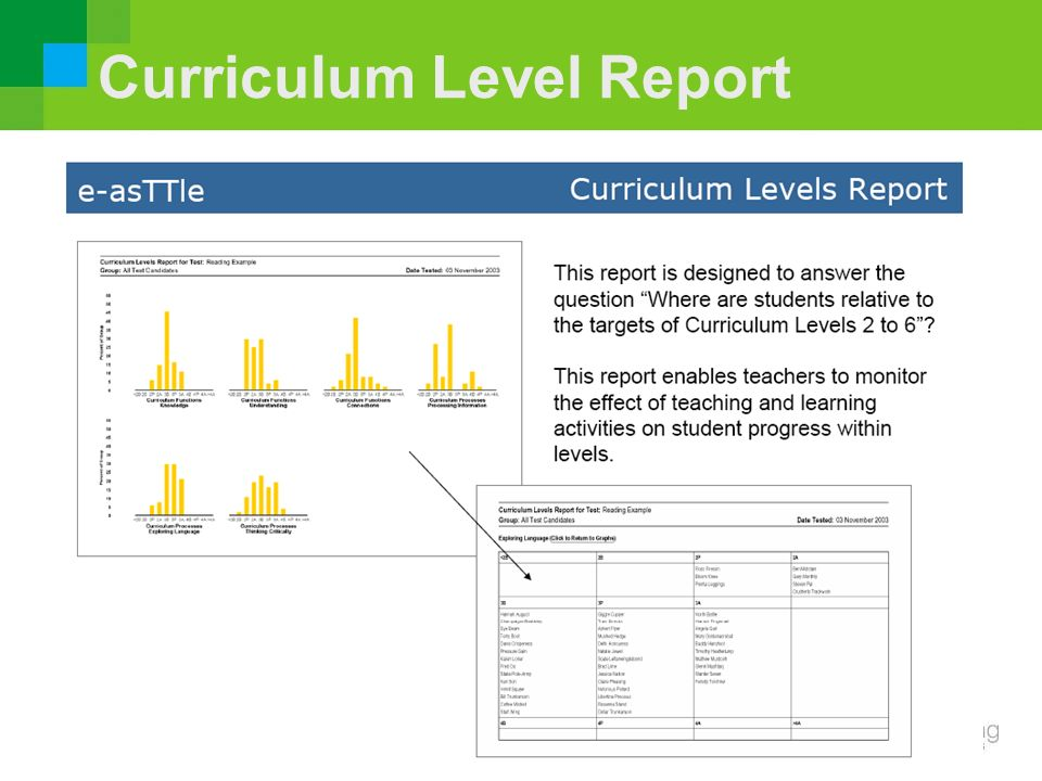 Curriculum Level Report