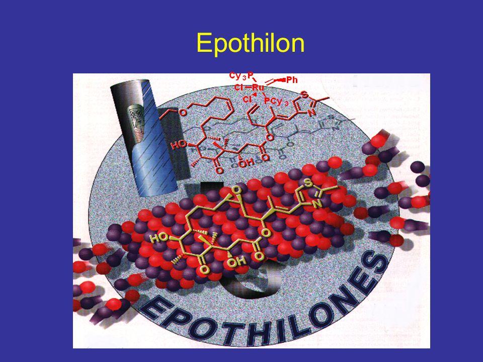 Epothilon Und die Metathese hat es im letzten Sommer geschafft auf das Titelblatt der. Angewandten Chemie zu kommen.