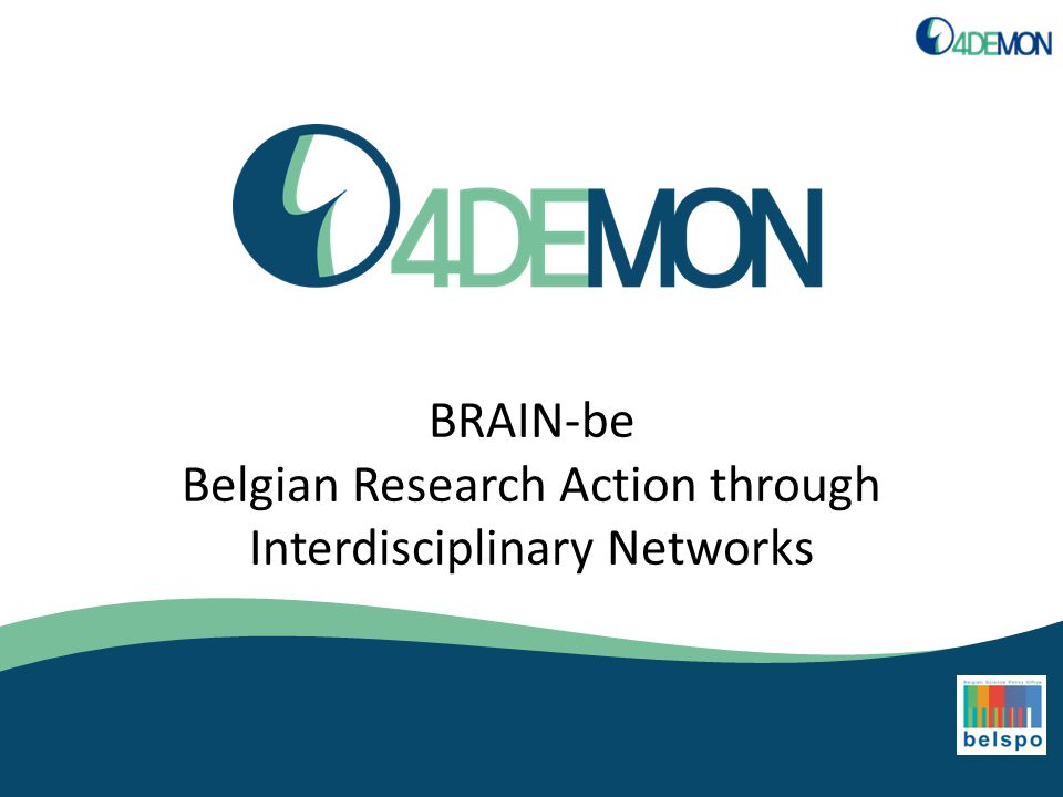 BRAIN-be Belgian Research Action through Interdisciplinary Networks