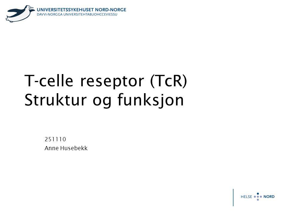 T-celle reseptor (TcR) Struktur og funksjon