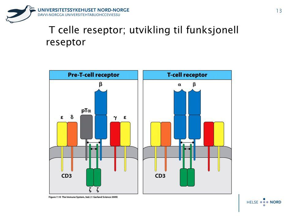 T celle reseptor; utvikling til funksjonell reseptor