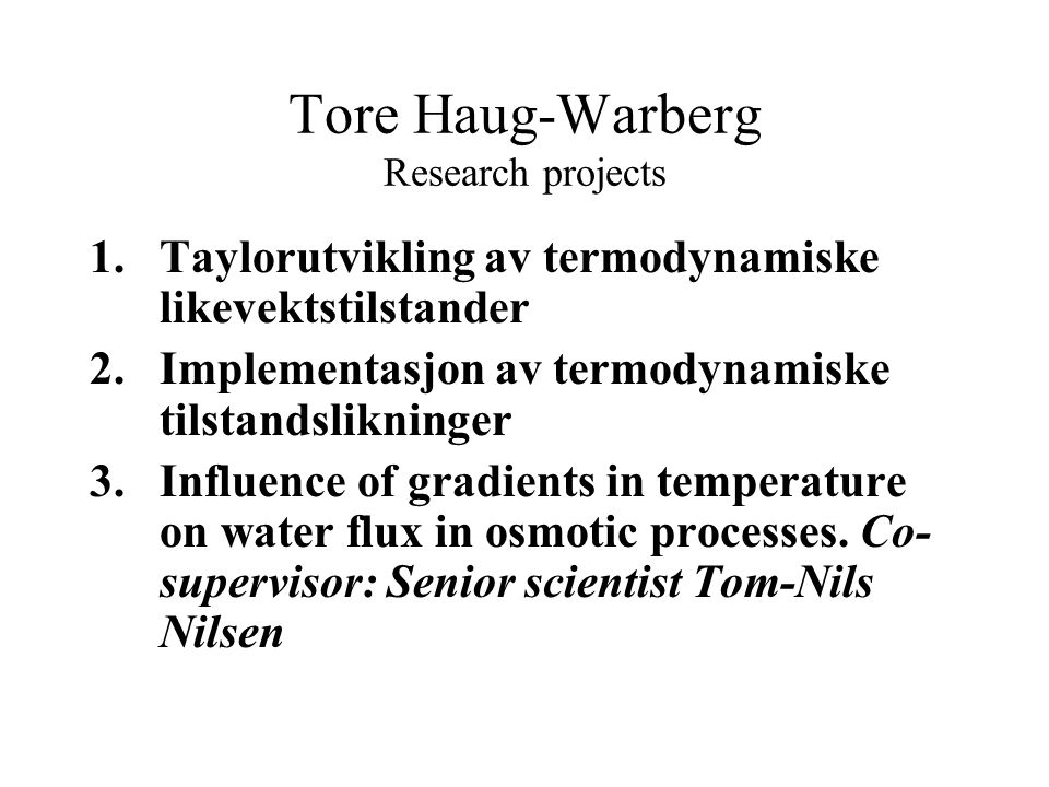 Tore Haug-Warberg Research projects