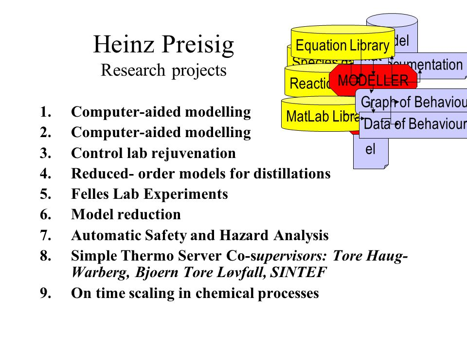 Heinz Preisig Research projects