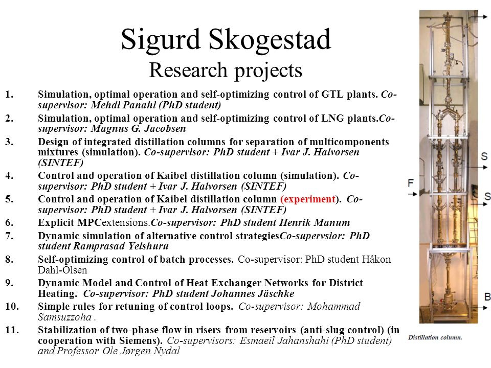 Sigurd Skogestad Research projects