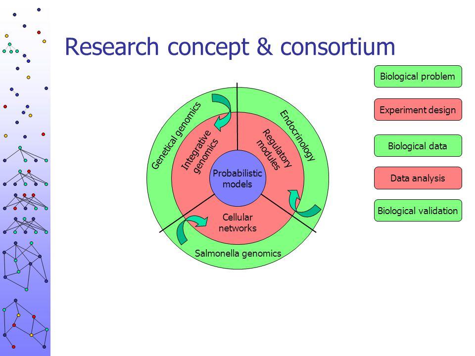 Research concept & consortium