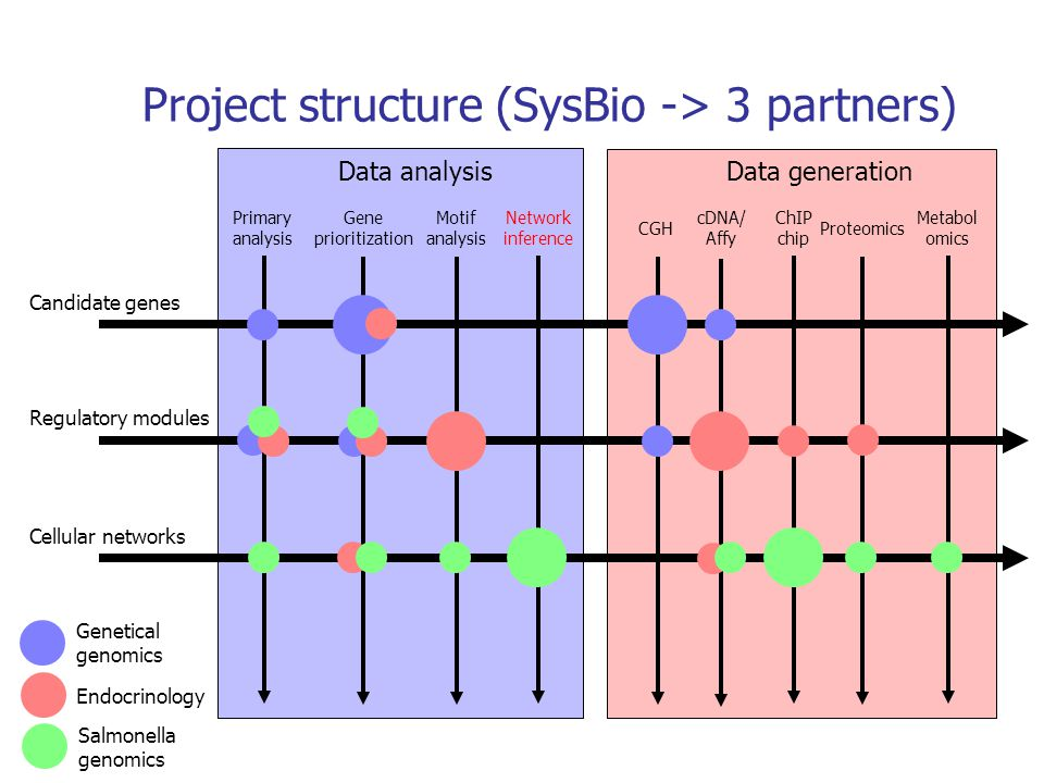 Project structure (SysBio -> 3 partners)