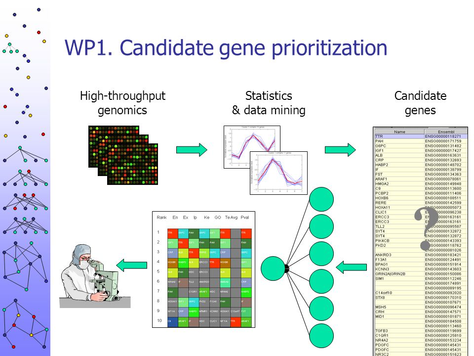 WP1. Candidate gene prioritization