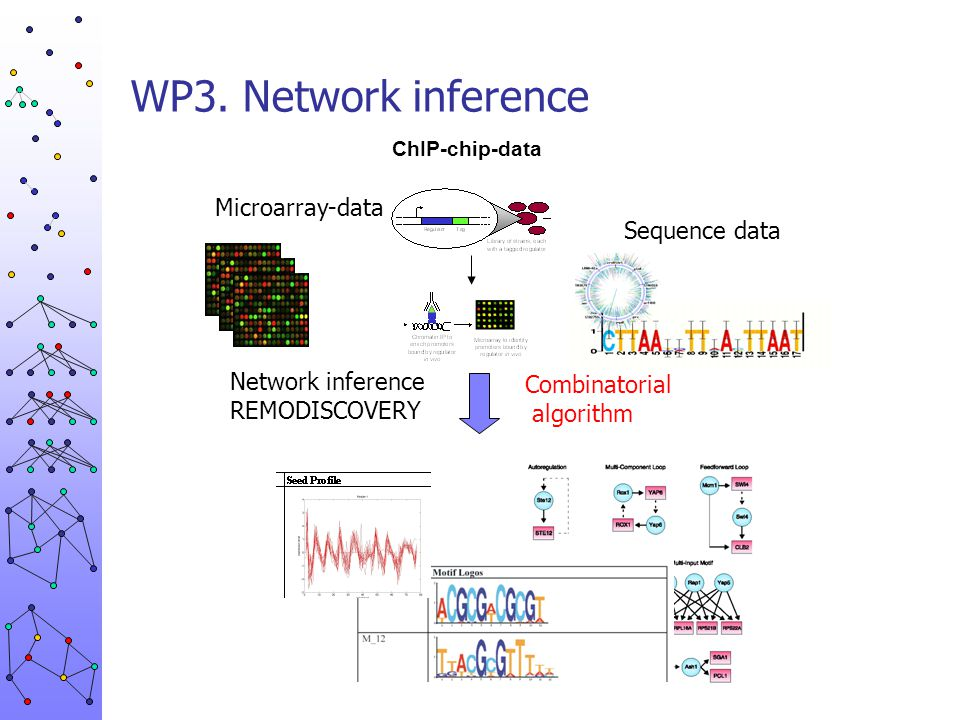 WP3. Network inference Microarray-data Sequence data Network inference