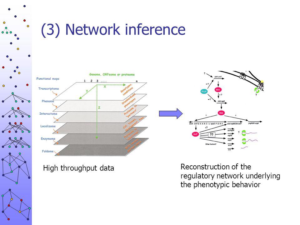 (3) Network inference High throughput data.