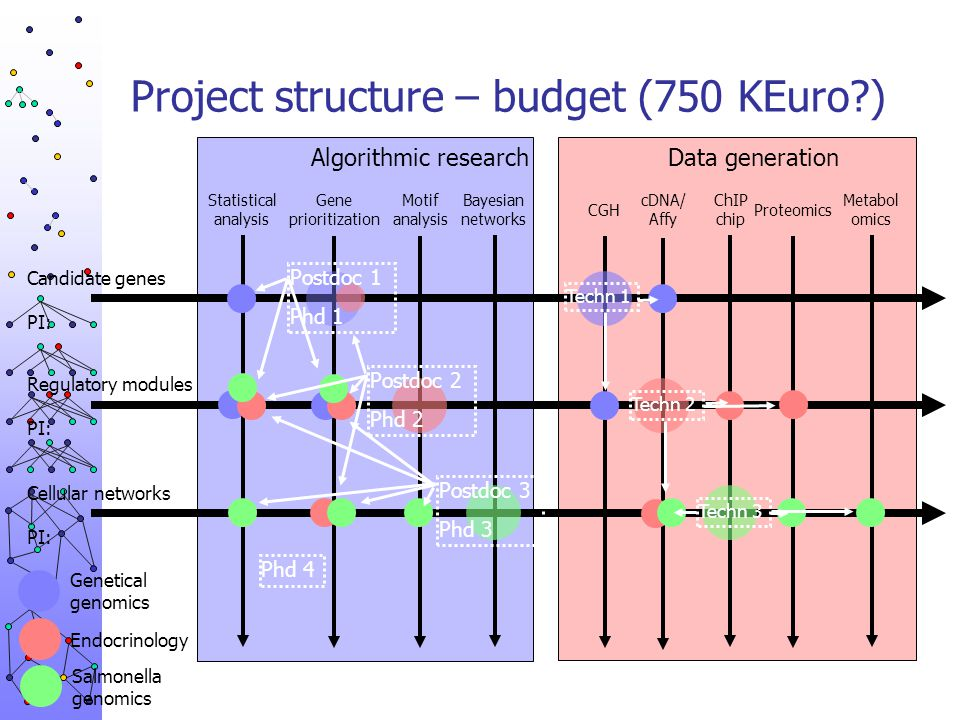 Project structure – budget (750 KEuro )
