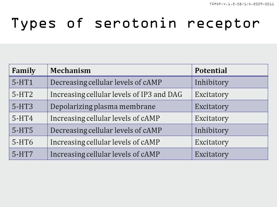 Types of serotonin receptor