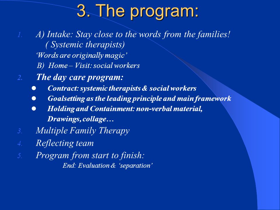 3. The program: A) Intake: Stay close to the words from the families! ( Systemic therapists)