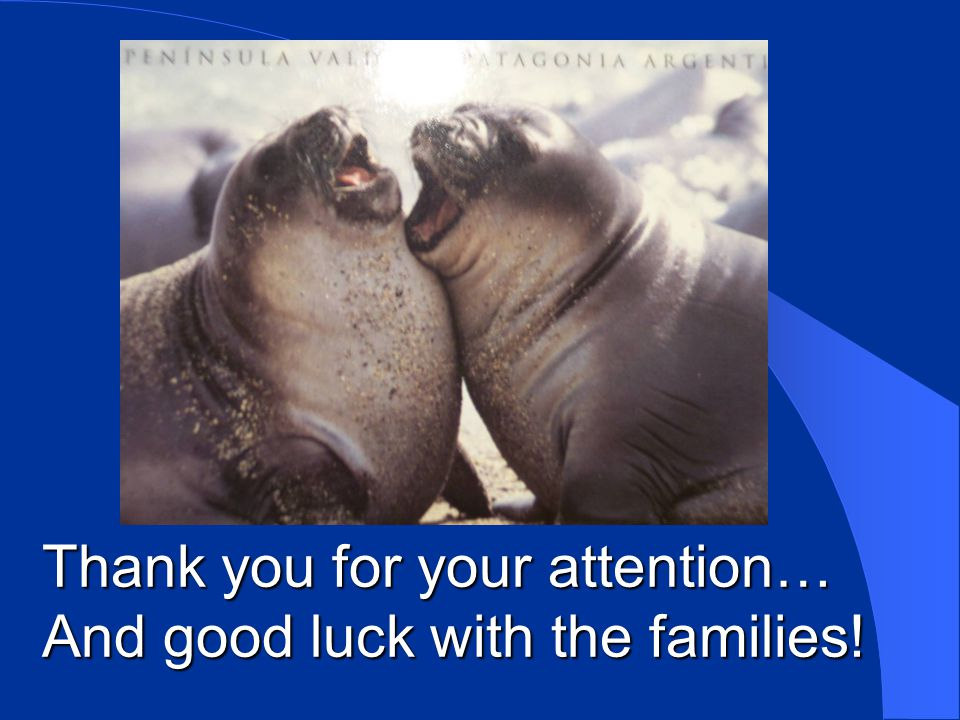 Thank you for your attention… And good luck with the families!