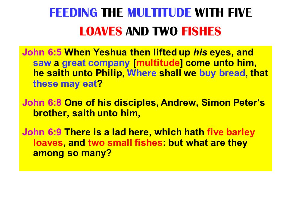 FEEDING THE MULTITUDE WITH FIVE LOAVES AND TWO FISHES