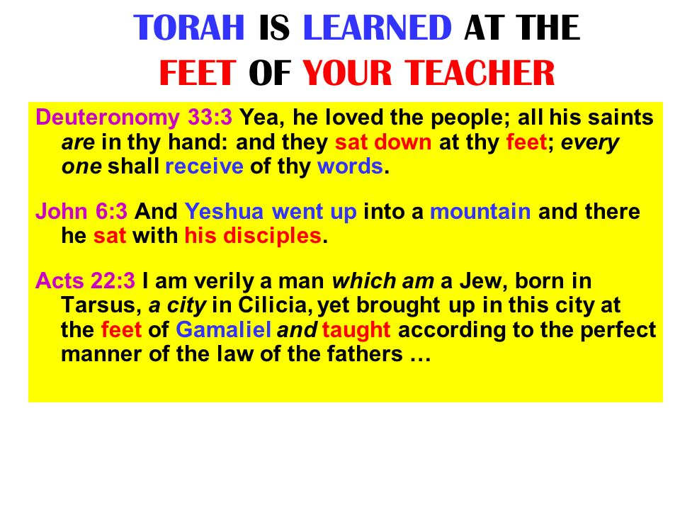 TORAH IS LEARNED AT THE FEET OF YOUR TEACHER
