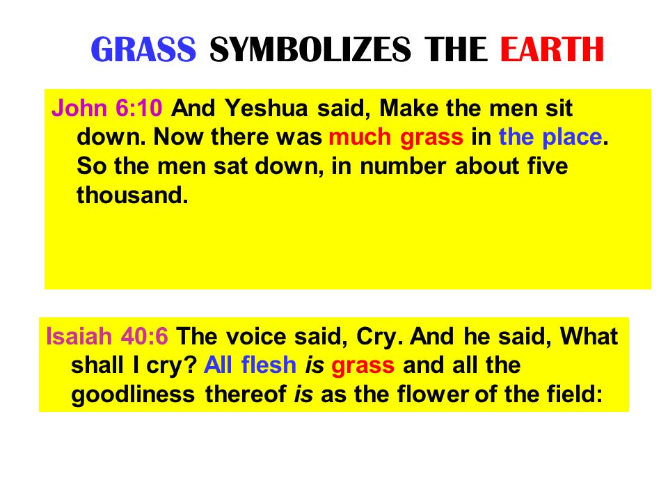 GRASS SYMBOLIZES THE EARTH