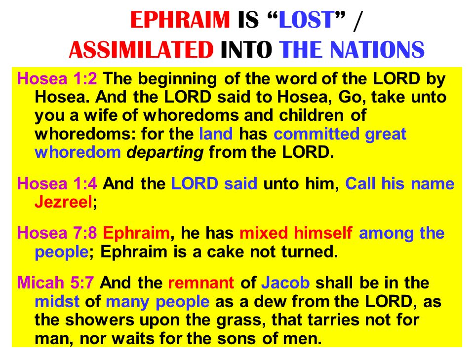 EPHRAIM IS LOST / ASSIMILATED INTO THE NATIONS