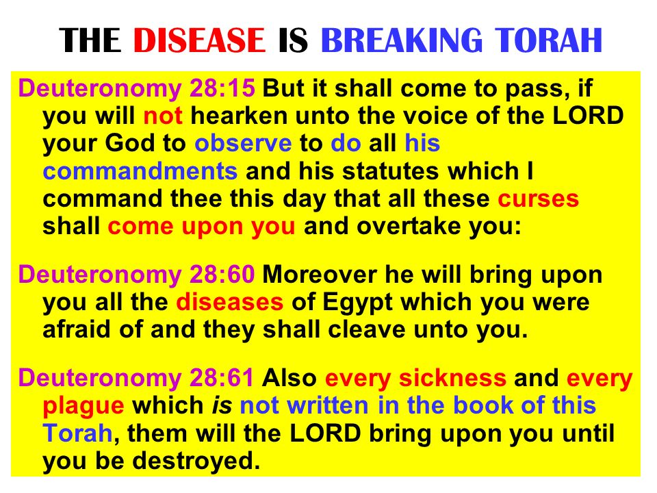 THE DISEASE IS BREAKING TORAH