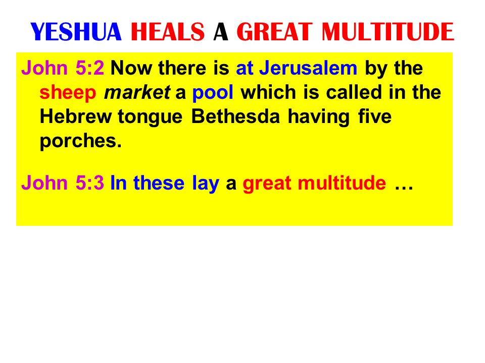 YESHUA HEALS A GREAT MULTITUDE