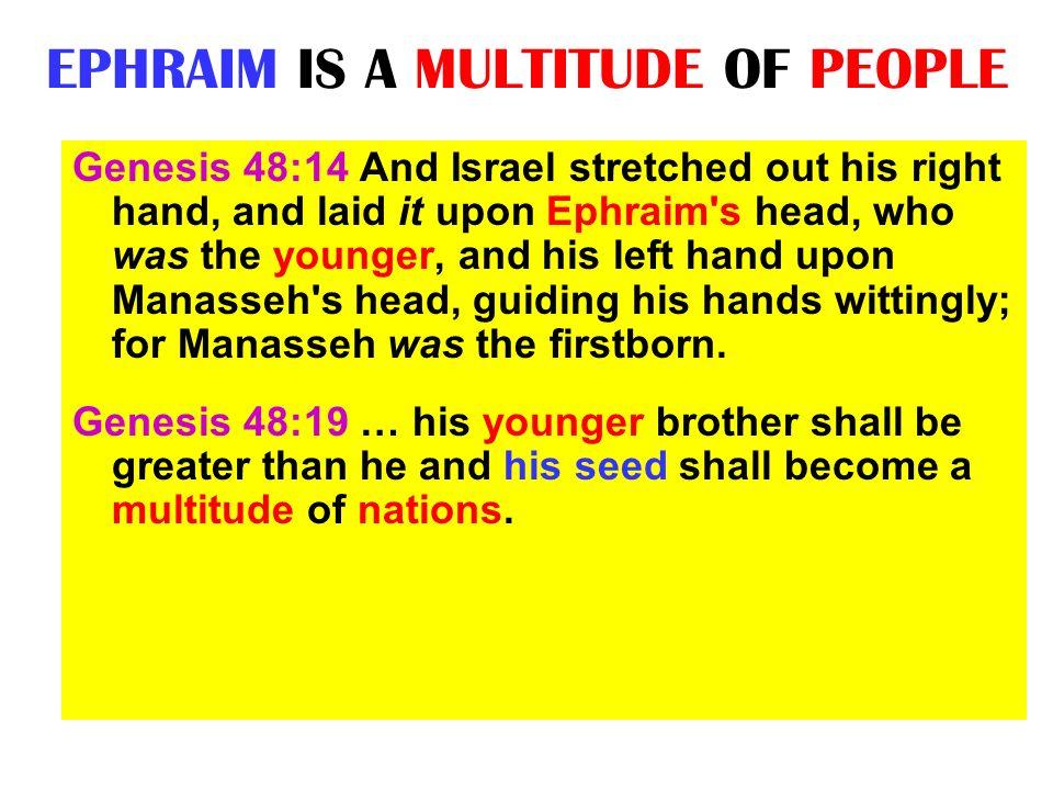 EPHRAIM IS A MULTITUDE OF PEOPLE