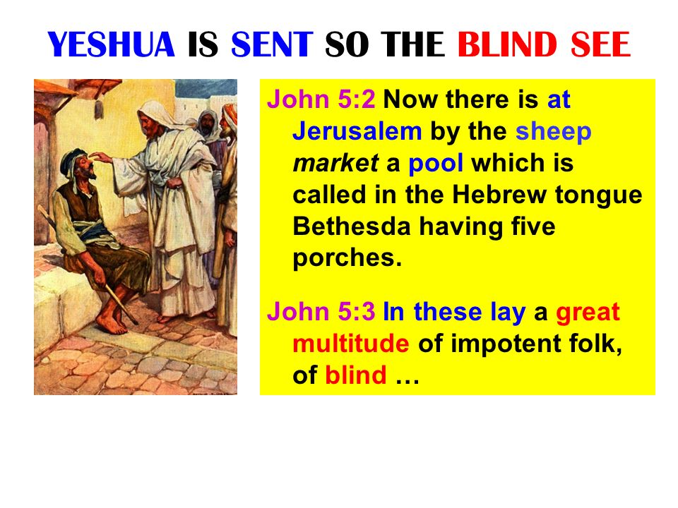 YESHUA IS SENT SO THE BLIND SEE