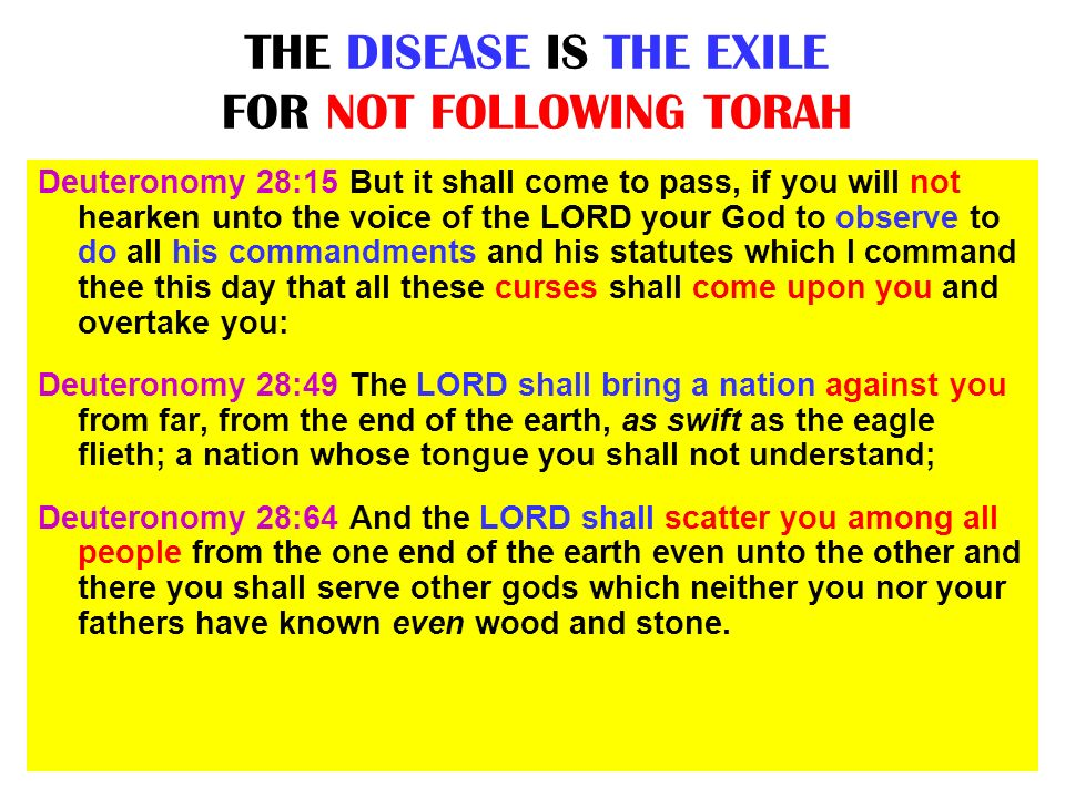 THE DISEASE IS THE EXILE FOR NOT FOLLOWING TORAH
