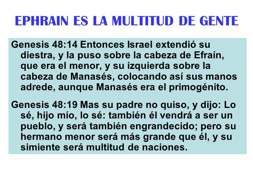 EPHRAIN ES LA MULTITUD DE GENTE