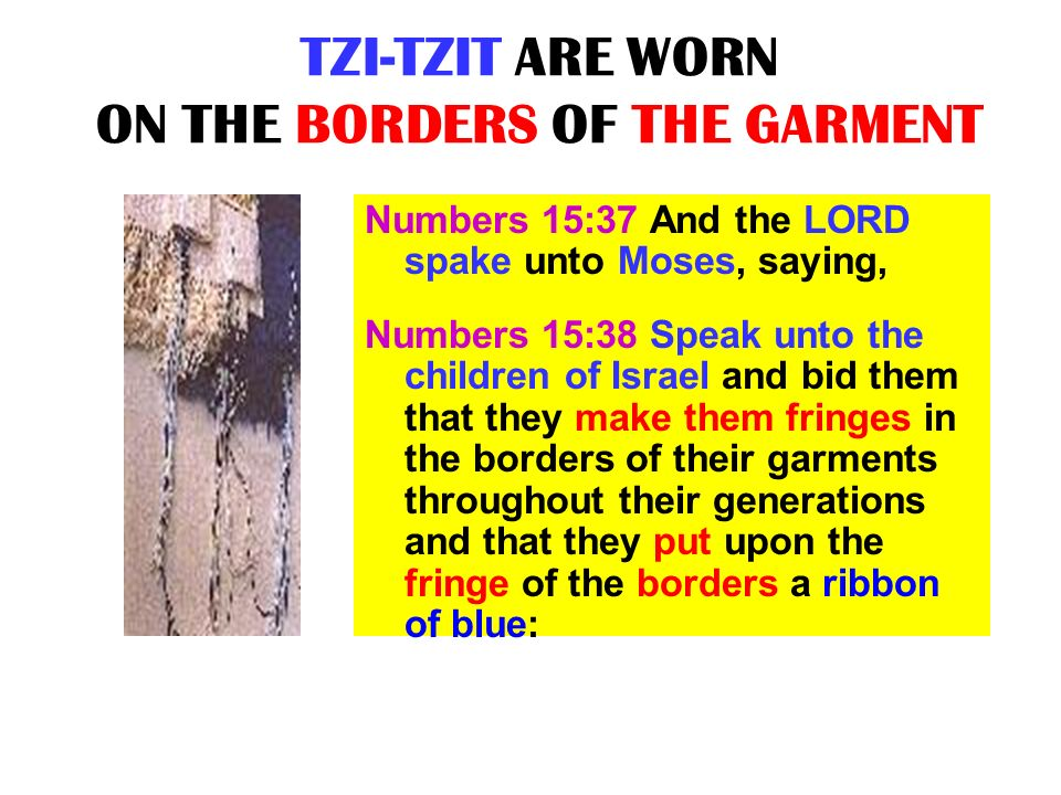 TZI-TZIT ARE WORN ON THE BORDERS OF THE GARMENT