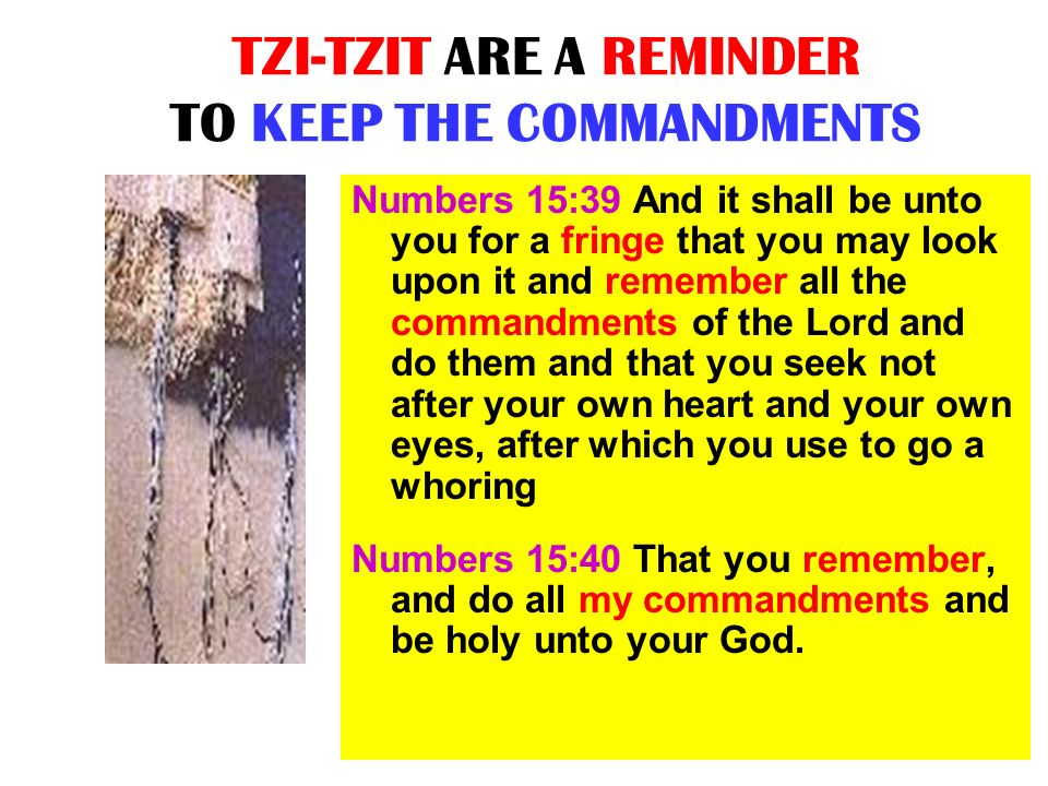 TZI-TZIT ARE A REMINDER TO KEEP THE COMMANDMENTS