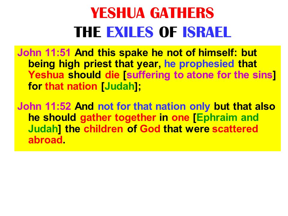 YESHUA GATHERS THE EXILES OF ISRAEL