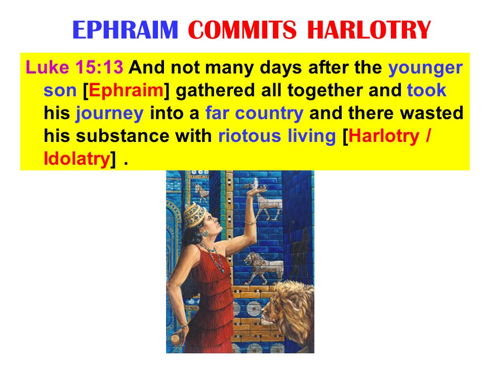EPHRAIM COMMITS HARLOTRY