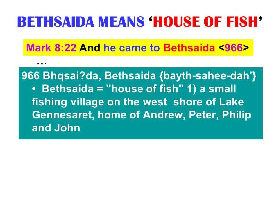 BETHSAIDA MEANS 'HOUSE OF FISH'
