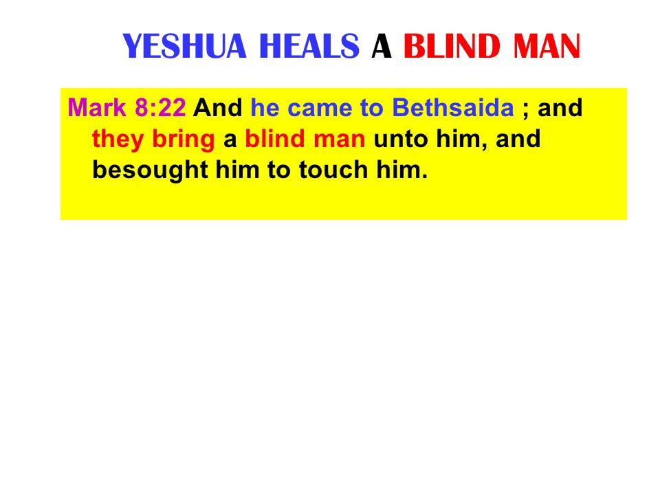 YESHUA HEALS A BLIND MAN