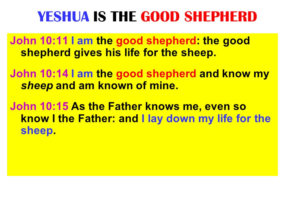 YESHUA IS THE GOOD SHEPHERD