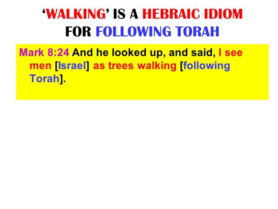 'WALKING' IS A HEBRAIC IDIOM FOR FOLLOWING TORAH