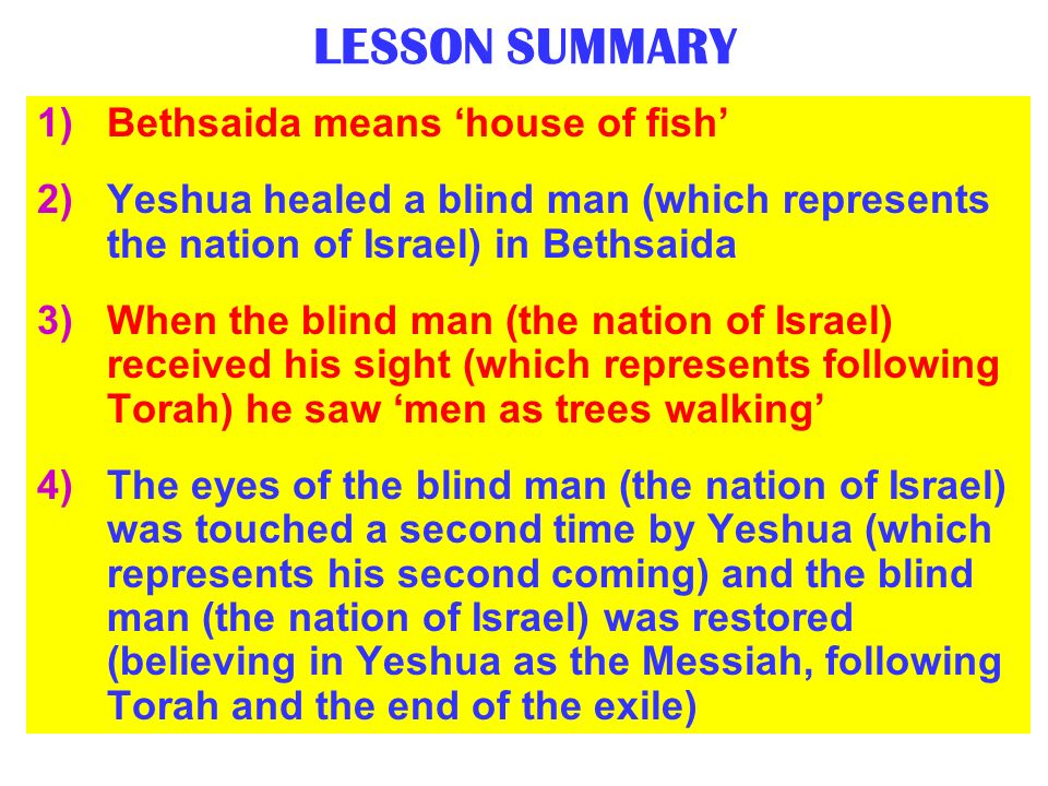 LESSON SUMMARY Bethsaida means 'house of fish'