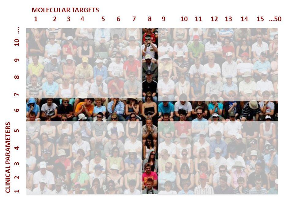MOLECULAR TARGETS 1 2 3 4 5 6 7 8 9 10 11 12 13 14 15 …50.