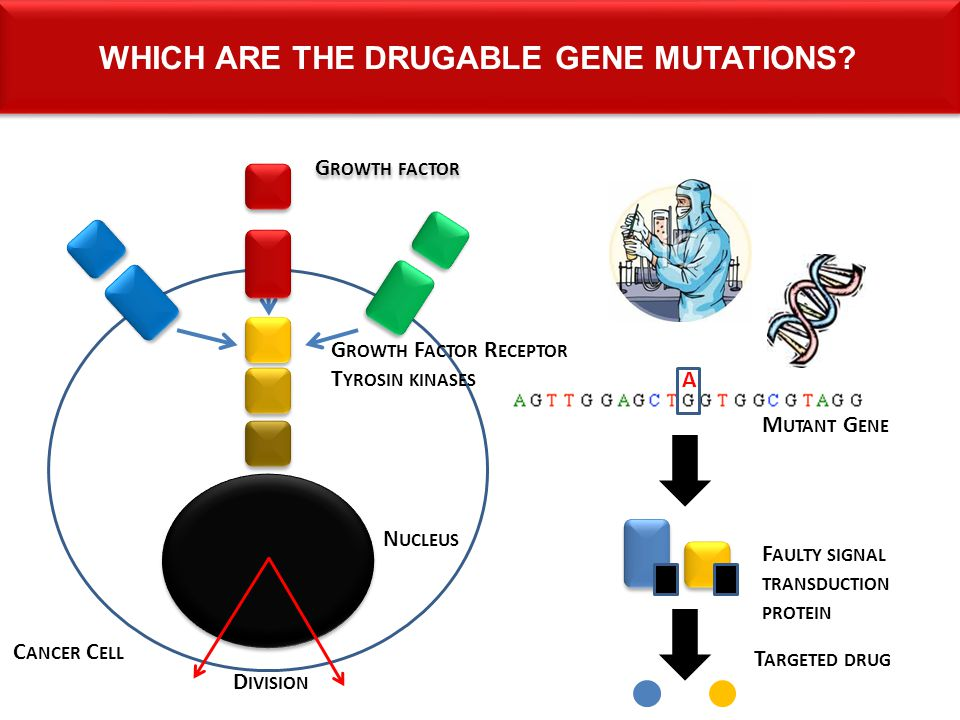 Which are the drugable gene mutations