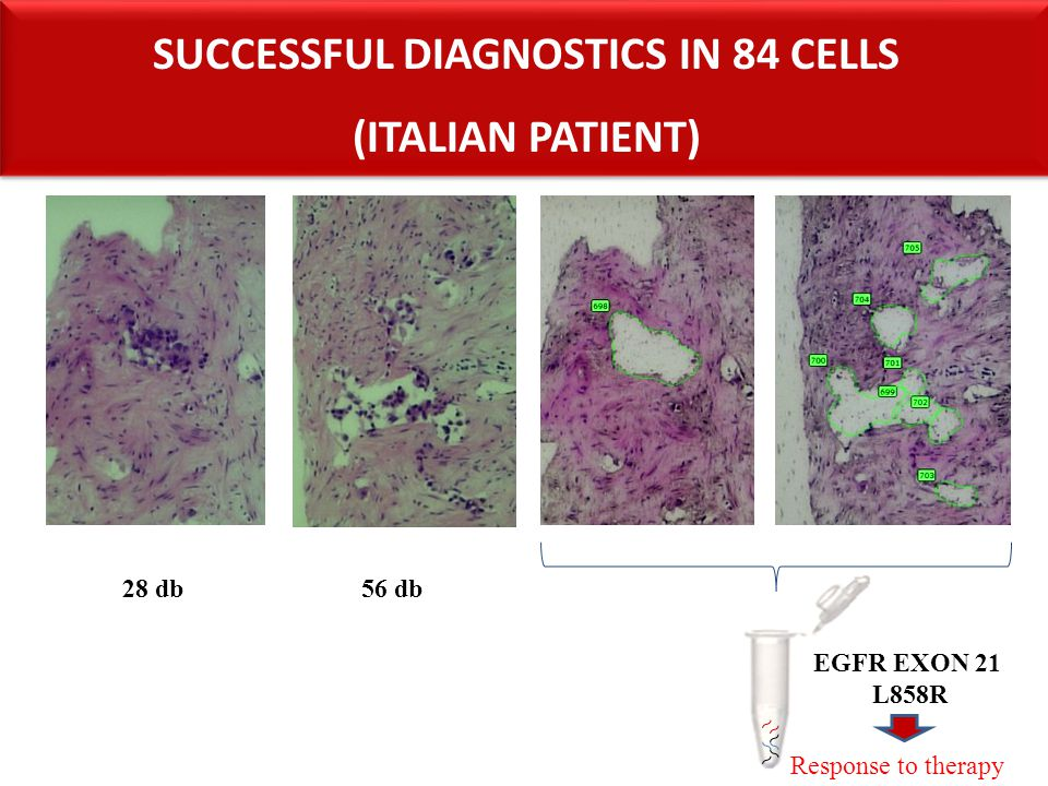 Successful diagnostics in 84 cells