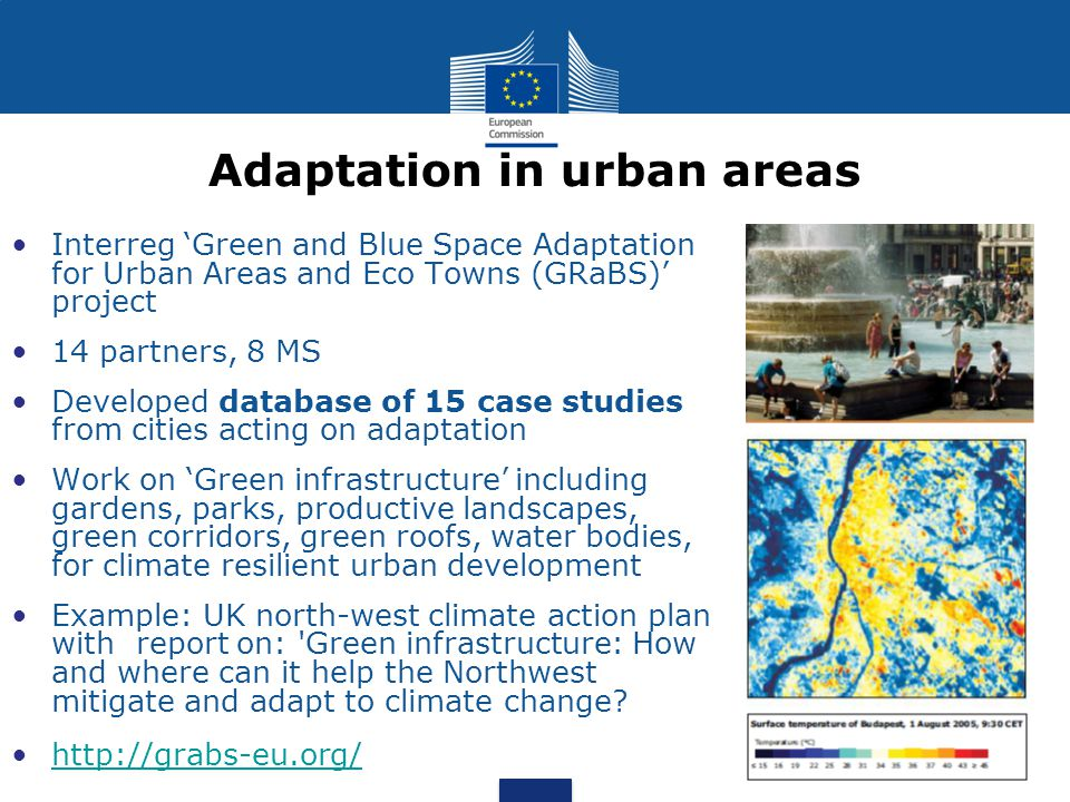Adaptation in urban areas