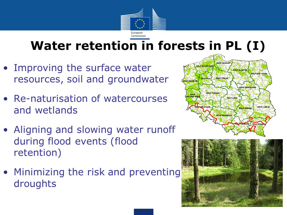 Water retention in forests in PL (I)
