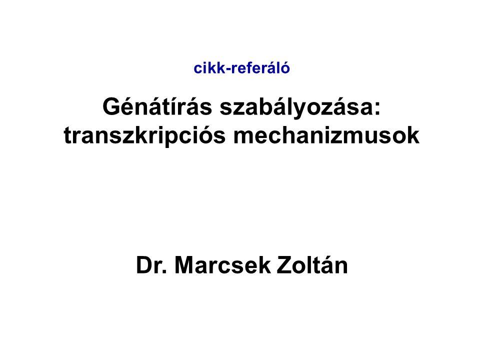 Génátírás szabályozása: transzkripciós mechanizmusok