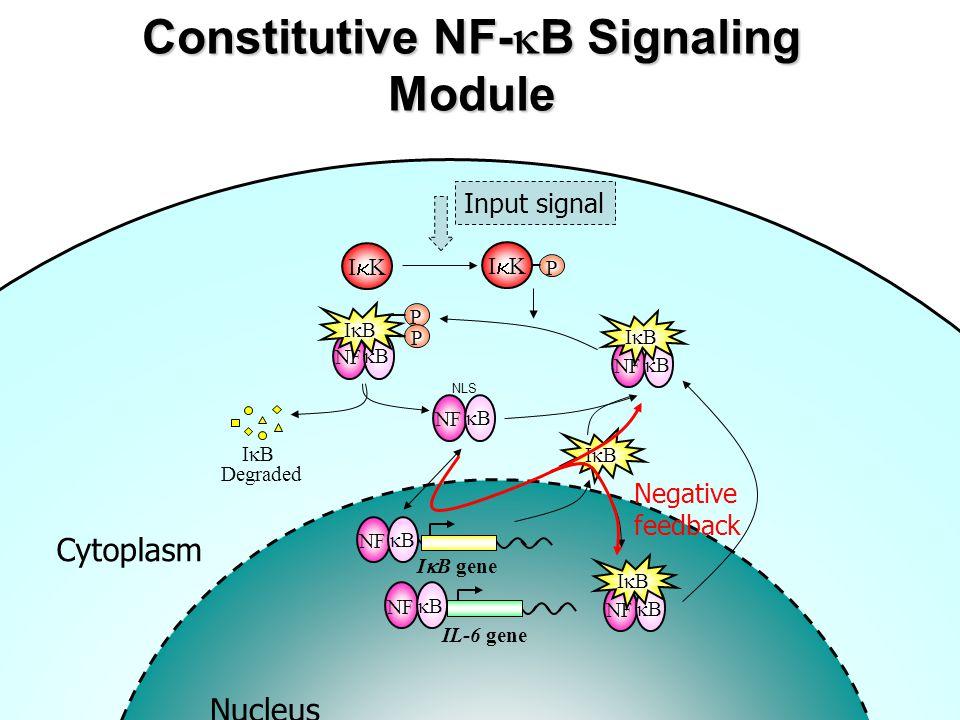 Constitutive NF-kB Signaling Module