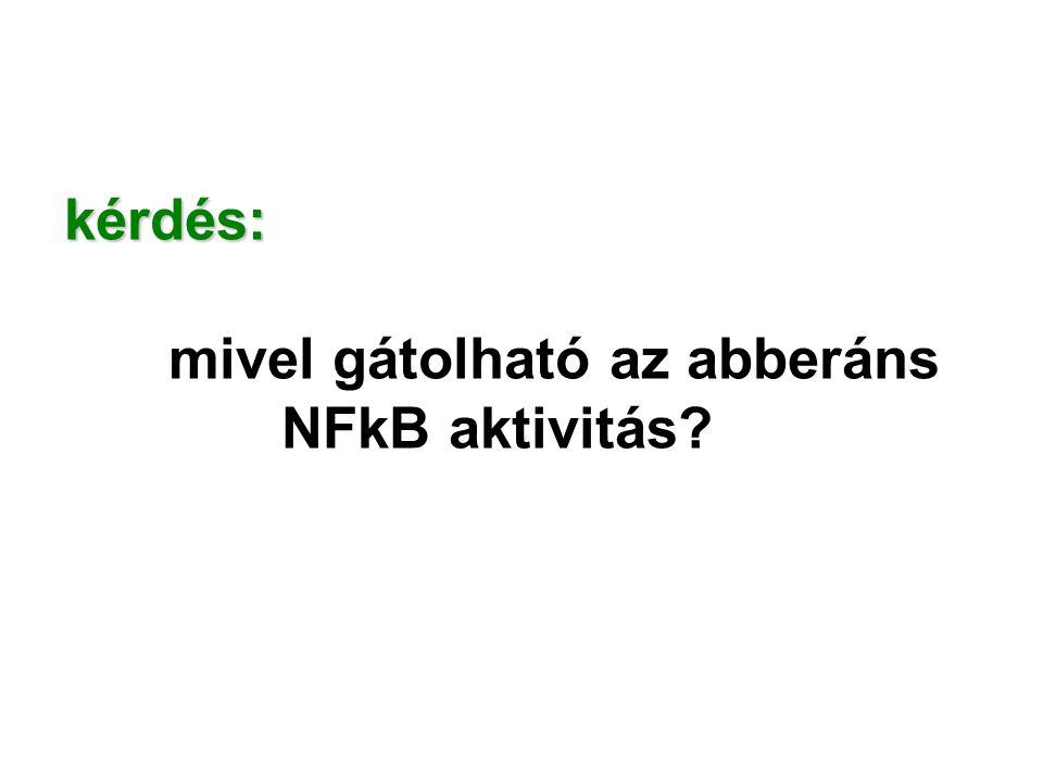 kérdés: mivel gátolható az abberáns NFkB aktivitás